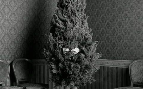 Fröhliche Weihnachten & guten Rutsch!